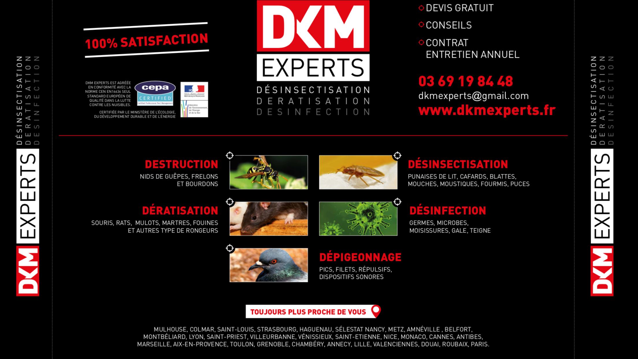 DKM Experts entreprise anti nuisibles à Belfort